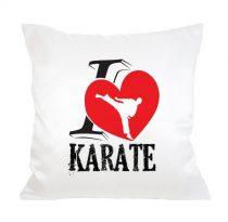 I <3 Karate Párna