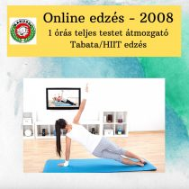 Online edzés - 2008